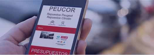 servicio-pagina-web-responsive